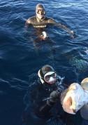 Pesca Mallorca 1.jpg