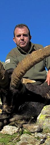gredos-ibex-lynx-hunt-spain1