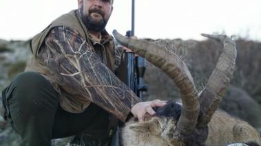 Охота на козерога Сиерра Невада в Испании с Lynx Tours 2