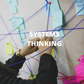 Systems Thinking photo.png