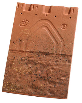 tu-plate-20x30-huguenot_1.jpg