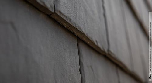 beauvoise-graphite-bd.jpg