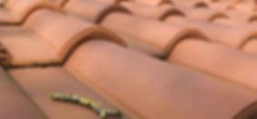 Onda Interocking Roman Clay Tile