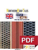 Ketley PDF.jpg