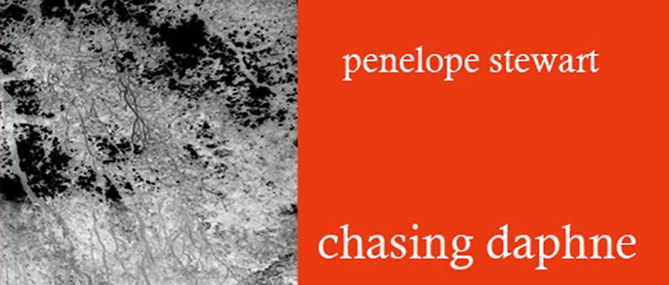 chasing daphne