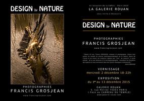 DESIGN by NATURE à la GALERIE ROUAN  - CARREAU DU TEMPLE - PARIS
