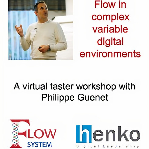 Flow in complex variable digital environments