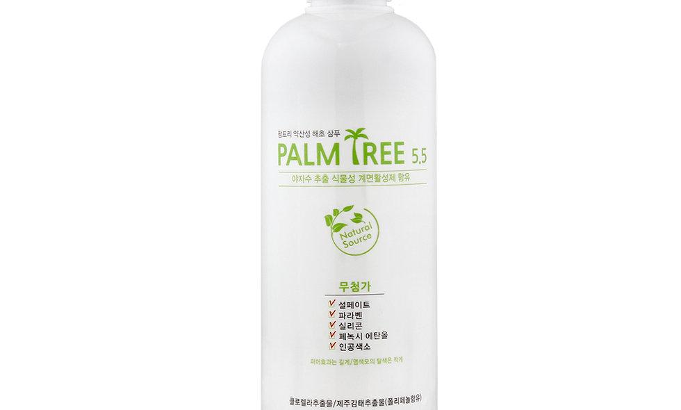 PALM TREE 5.5