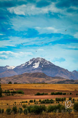 Paysage des Andes