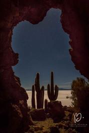 Le salar d'Uyuni sous la lumière de la lune