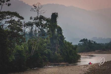 Parc du Manu, Amazonie