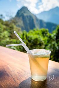 Une limonde face au Huayna Picchu