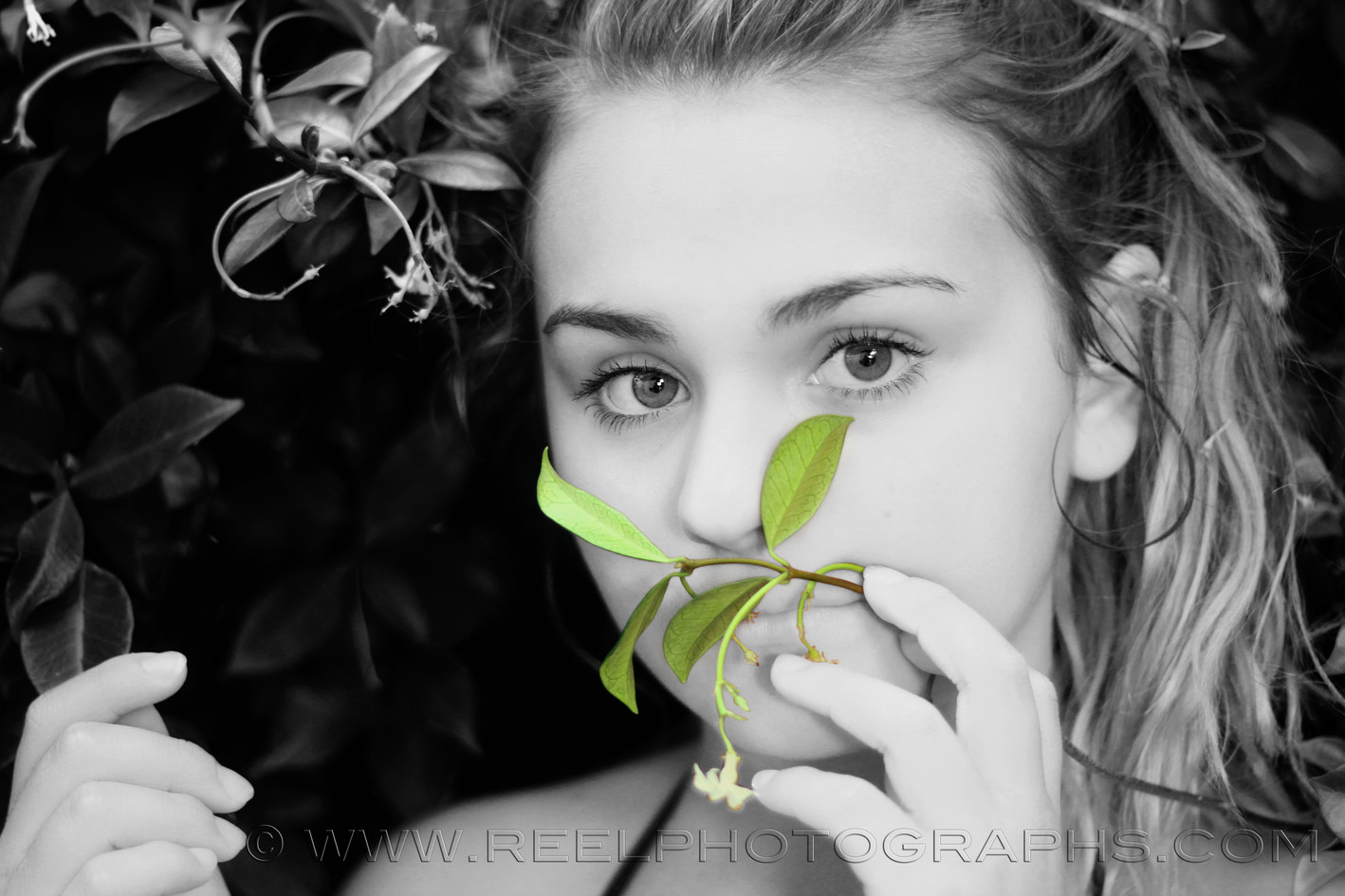 Image by Alicia Pavis - retouching by Alicia Pavlis