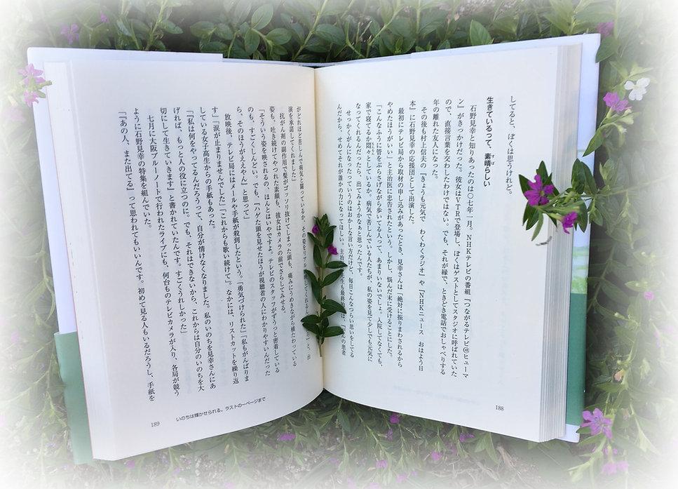 2baio_IMG_4666.jpg
