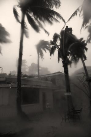 Typhoon2_web.jpg