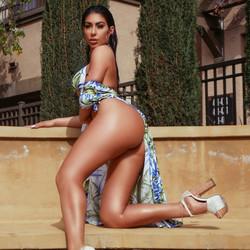 Beautiful Tan Female Stripper Los Angeles CA