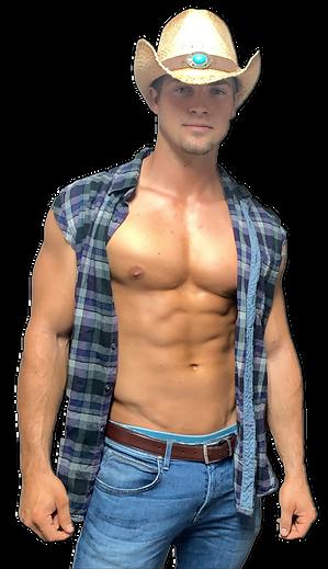 Hire virtual male stripper parties online!