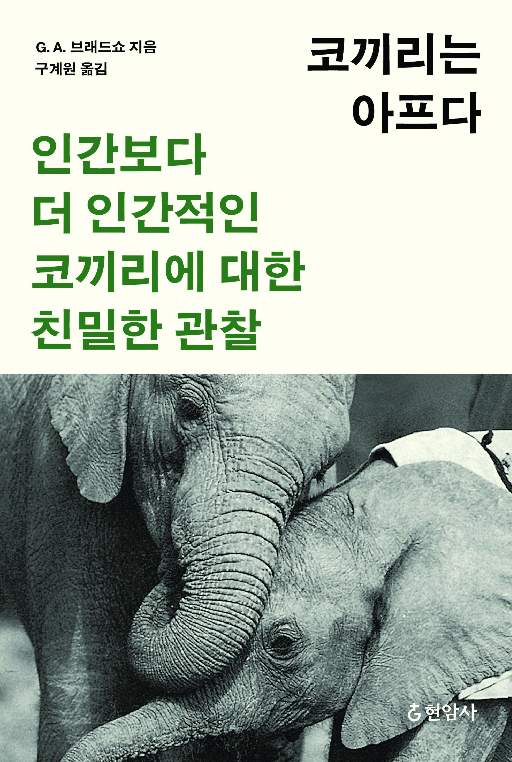 코끼리는아프다 표지 (정재완)