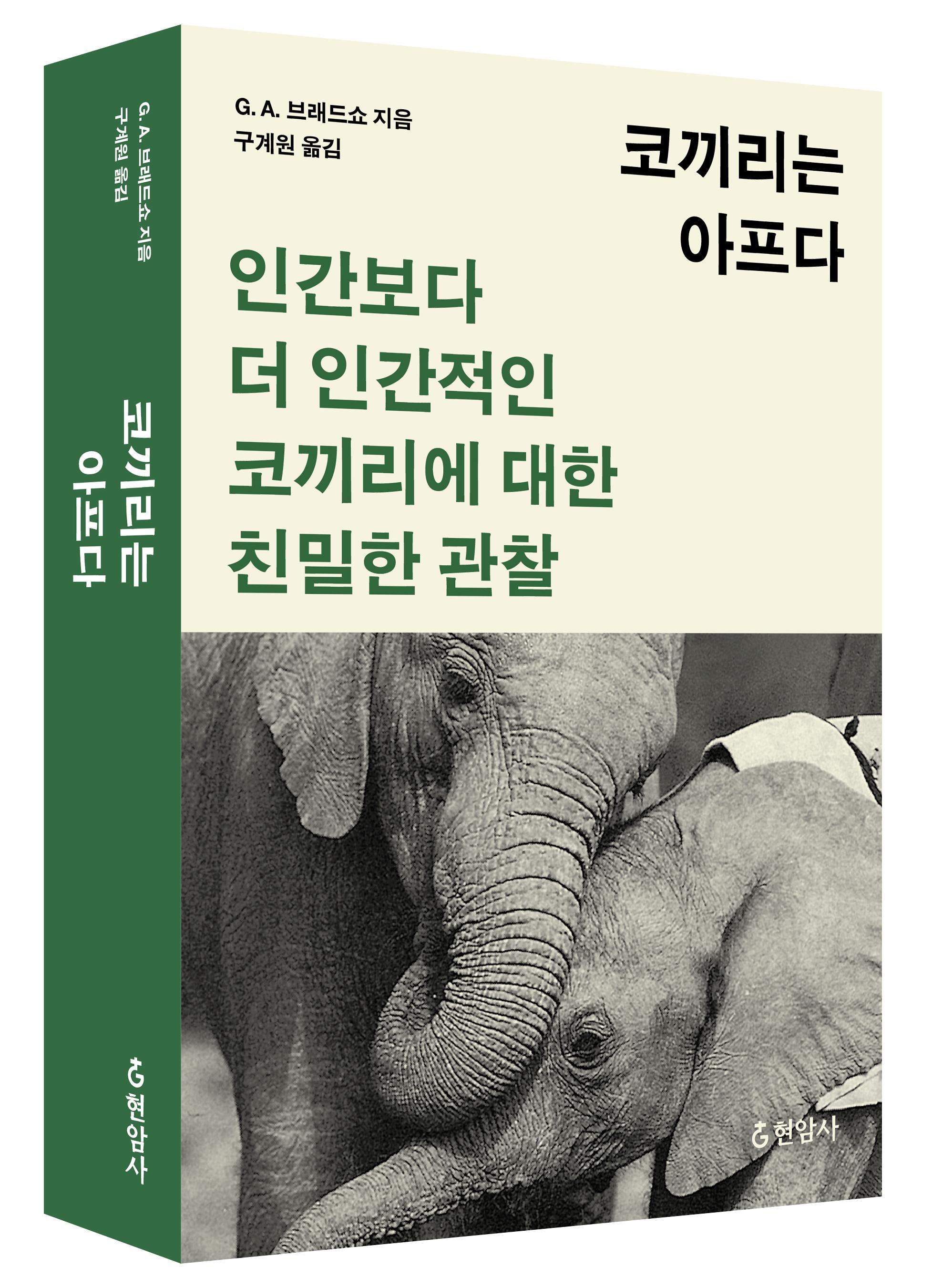 <코끼리는아프다>