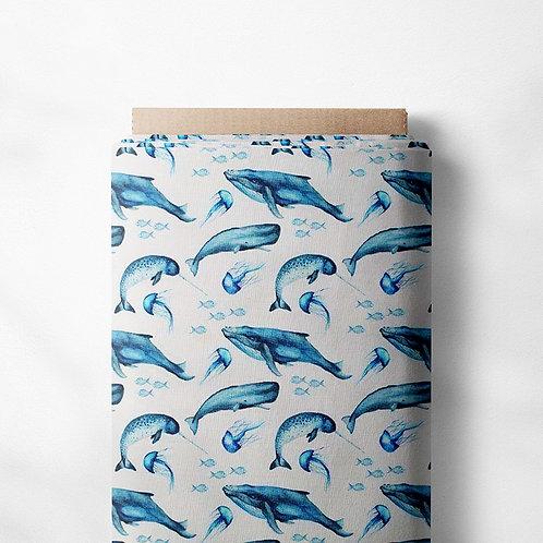 0.5m Baumwolljersey Wale und Quallen