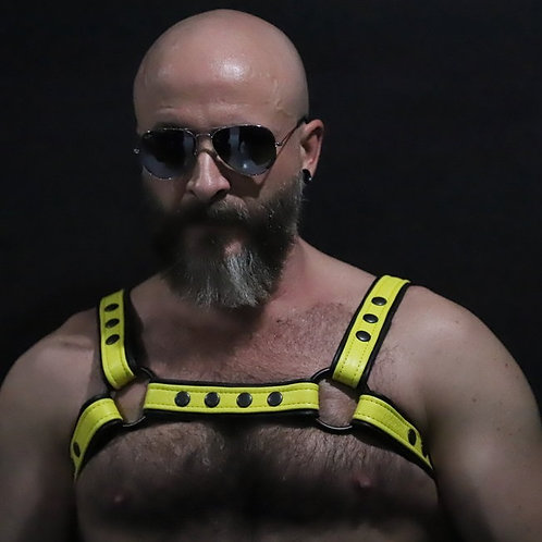 Two- Tone Crossbow Chest Harness