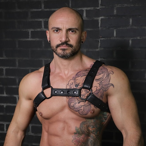 Crossbow Chest Harness