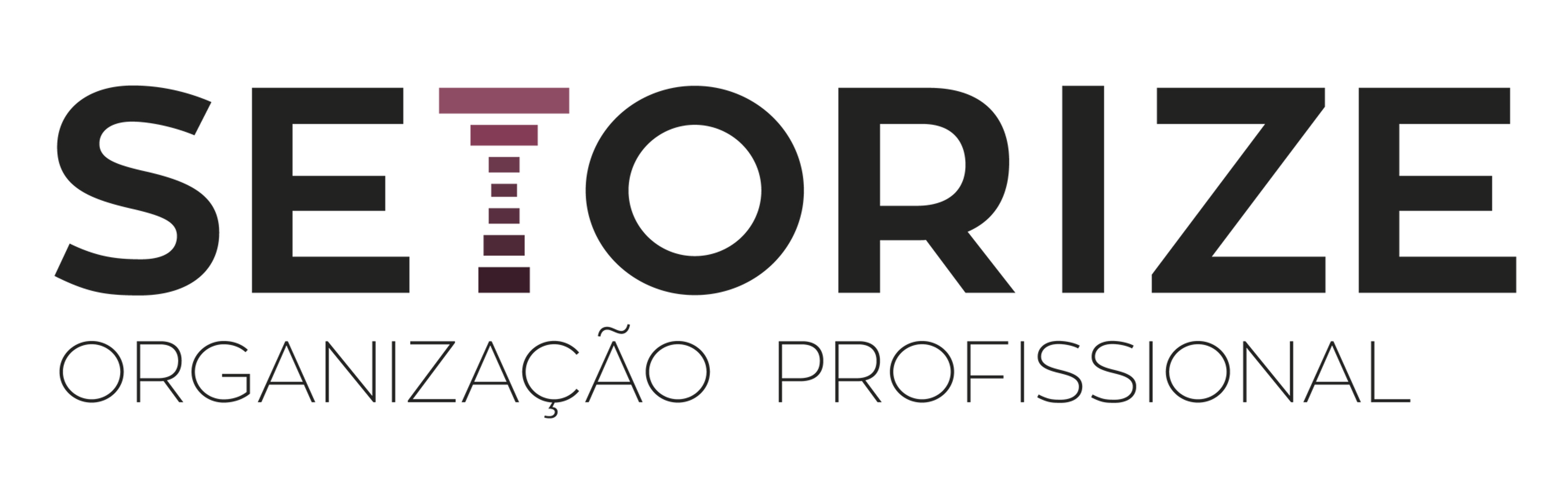 Setorize - Organização Profissional