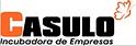 casulo_incubadora_Joana_Bicalho_Felix_Re