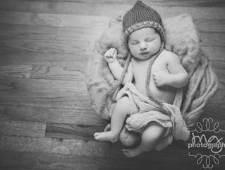 Parker. 11 days old.