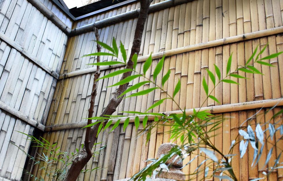 庭の植栽2-min.jpg