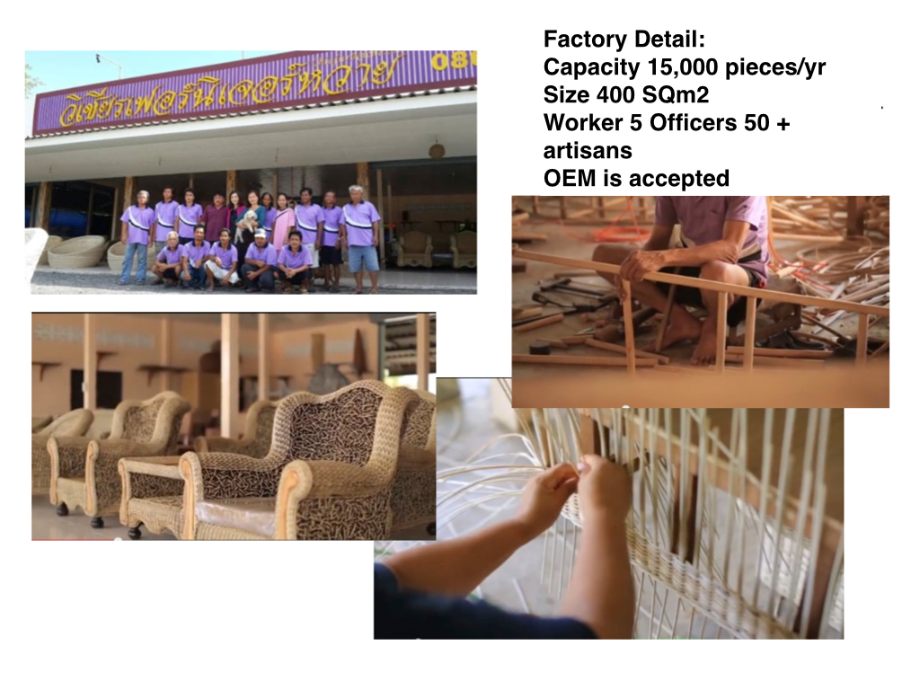 sarnn company profile.004