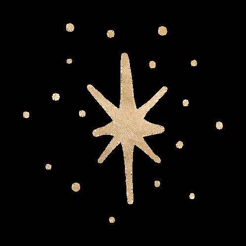 1 Stern