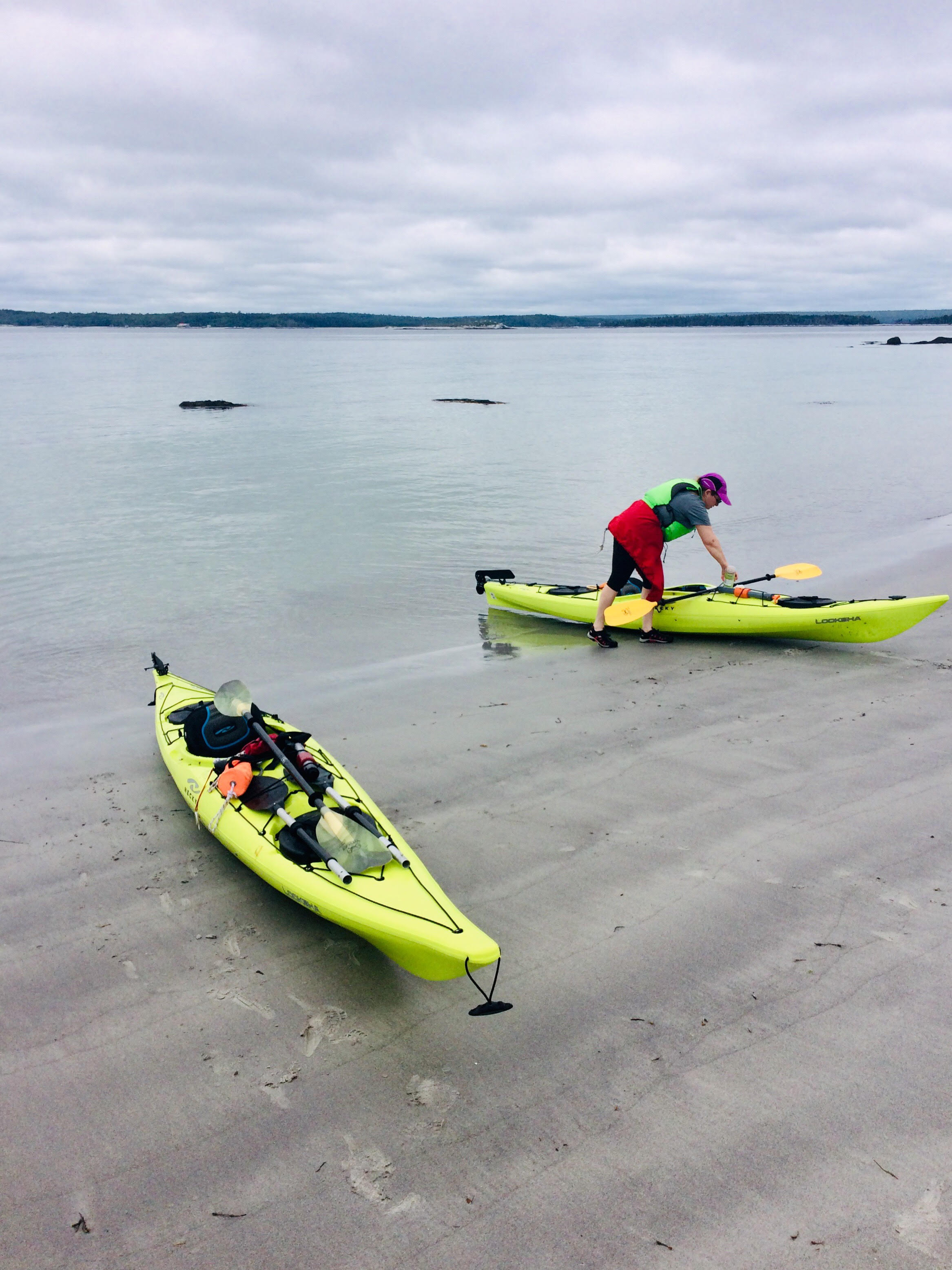 Private Guided Kayaking Beach Tour