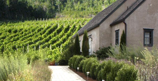 Petite Rivière Winery Tour