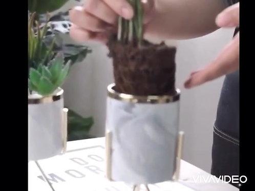 Modern Flower Pot / Vase with Golden Rim and Golden Finish - Single Piece