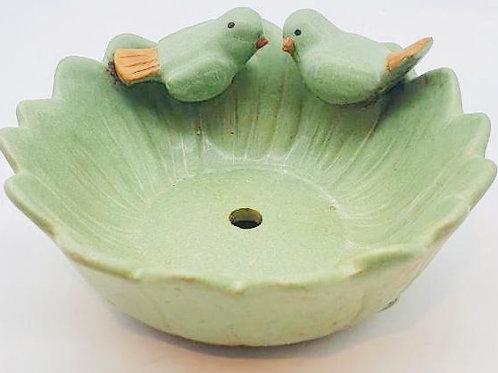 Two Beautiful Love Birds Pair