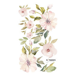 Stickers Magnolias..jpg