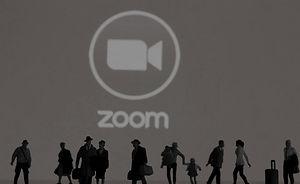 ZOOM pic copy.jpg