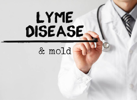 Is there a connection between Lyme disease and Mold?