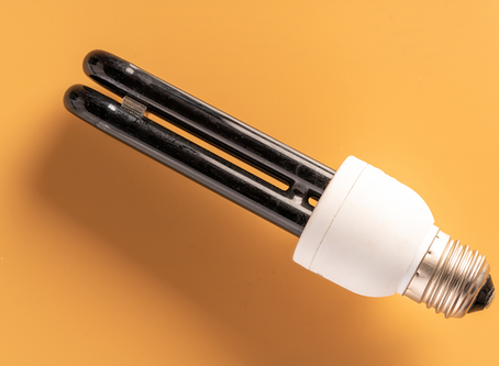 Can UV Light Effectively Kill Mold?