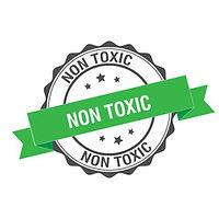 Non-toxic mold remediation services