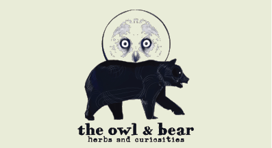 Owl and Bear