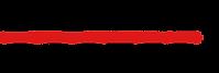 spokane rooter logo 2020.png