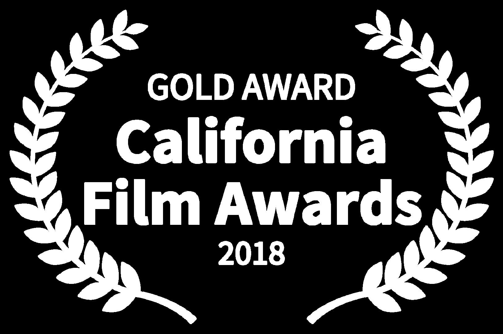 GOLD AWARD - California Film Awards - 20