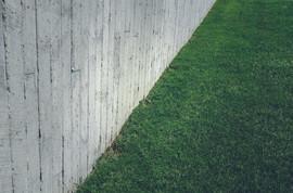 หญ้าสนามหญ้ากับผนังคอนกรีต