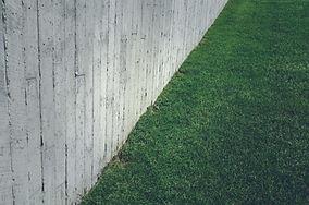 Erba Prato con muro di cemento