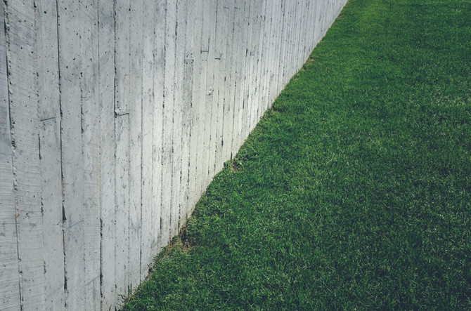 Synthetic vs. Real Lawns Part I