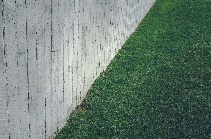 Rasen mit Betonwand