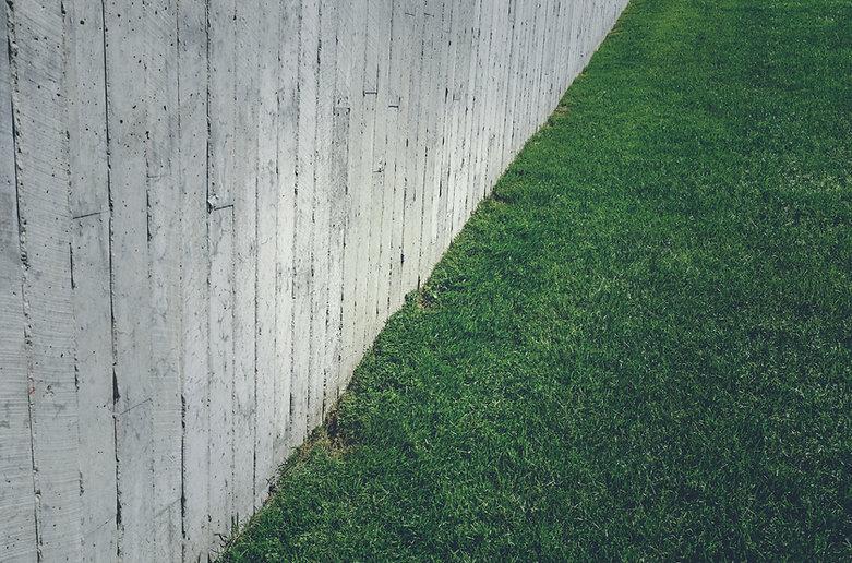 Trawy do trawników z betonową ścianą