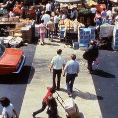Asaroton 1976